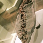 6500 yr old shoe [Oldest ever found] - Armenia